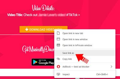 tiktok-video-download